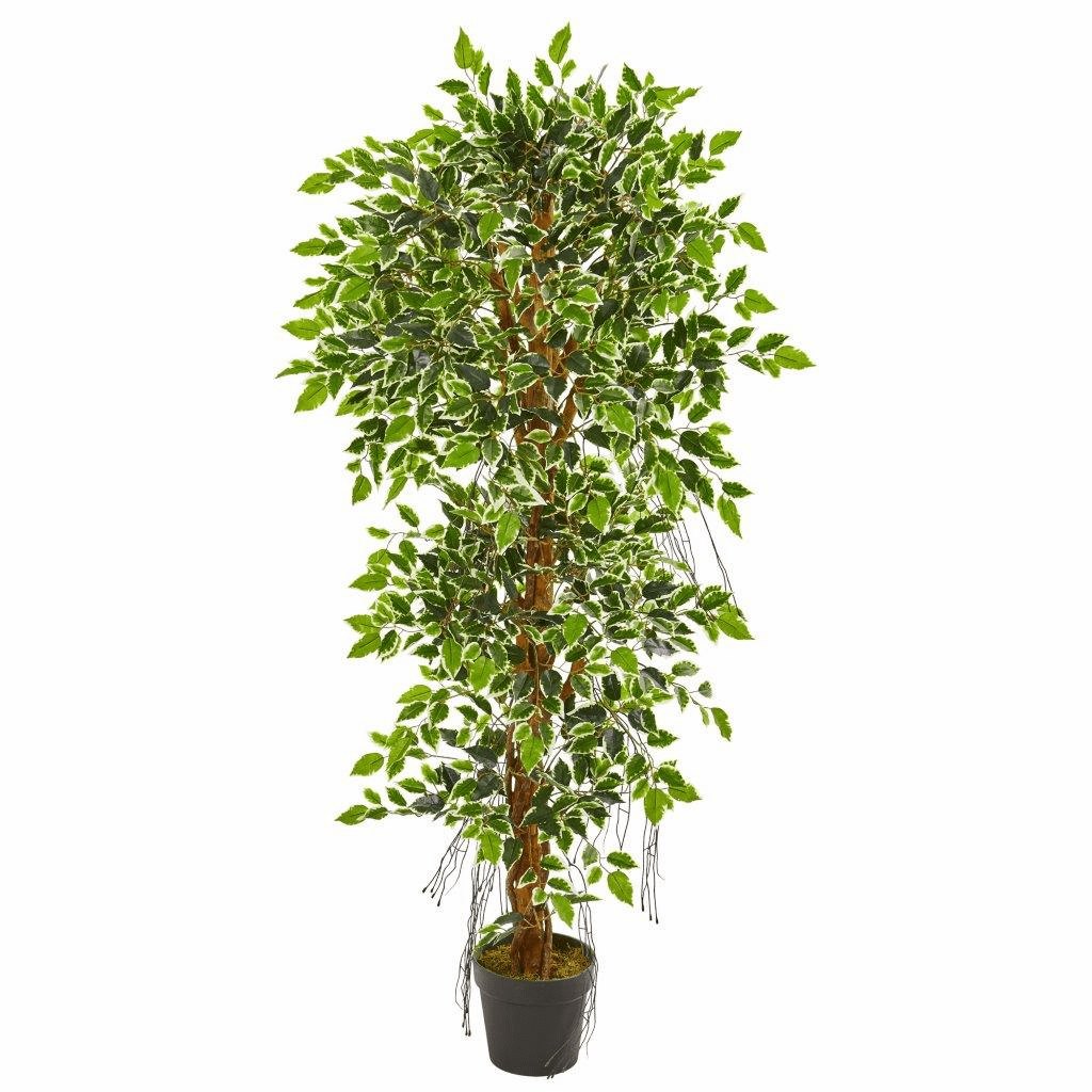 5� Elegant Ficus Artificial Tree