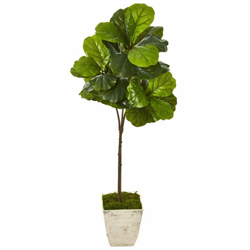 5' Fiddle Leaf Artificial Tree in Country White Planter (Real Touch) -