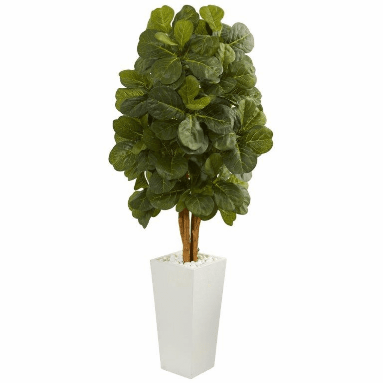 5� Fiddle Leaf Artificial Tree in White Tower Planter  -