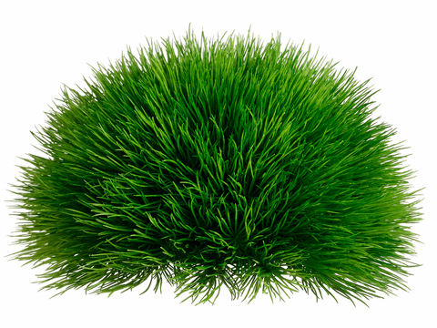 "5"" H Artificial Pine Grass Half Dome - Set of 6"