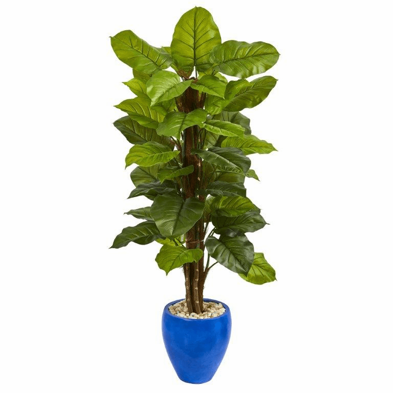 5� Large Leaf Philodendron Artificial Plant in Blue Planter (Real Touch)