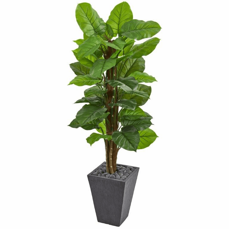 5� Large Leaf Philodendron Artificial Plant in Slate Planter (Real Touch)