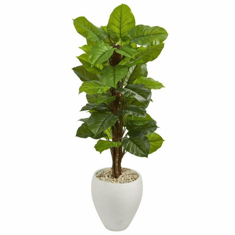 5� Large Leaf Philodendron Artificial Plant in White Oval Planter (Real Touch)