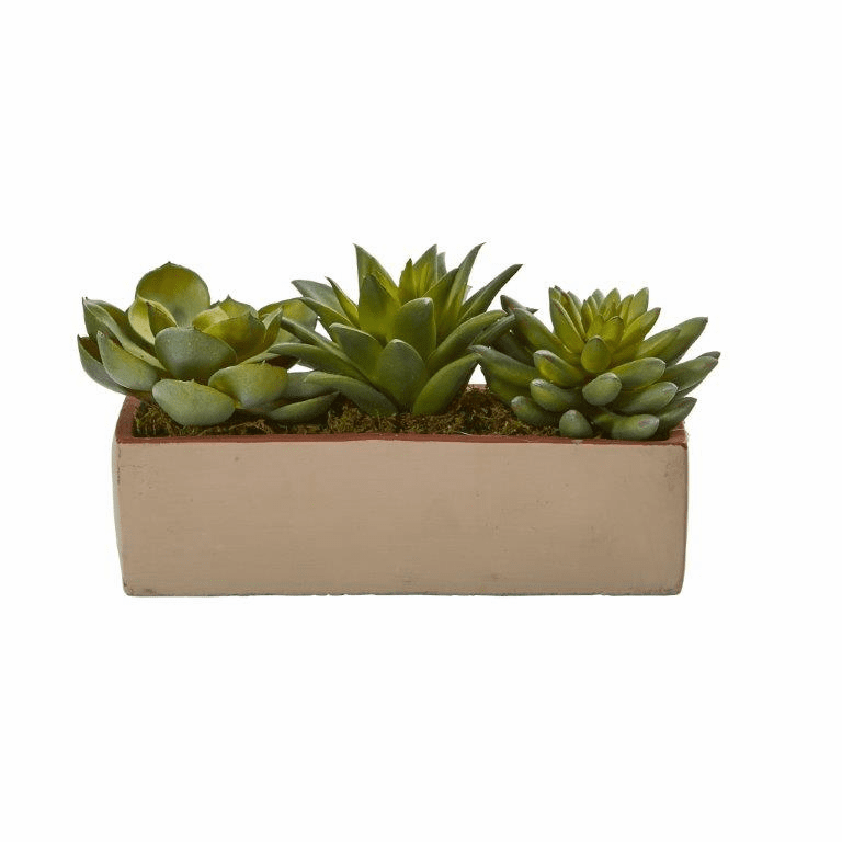 5� Mixed Succulent Artificial Cactus Arrangement in Pot