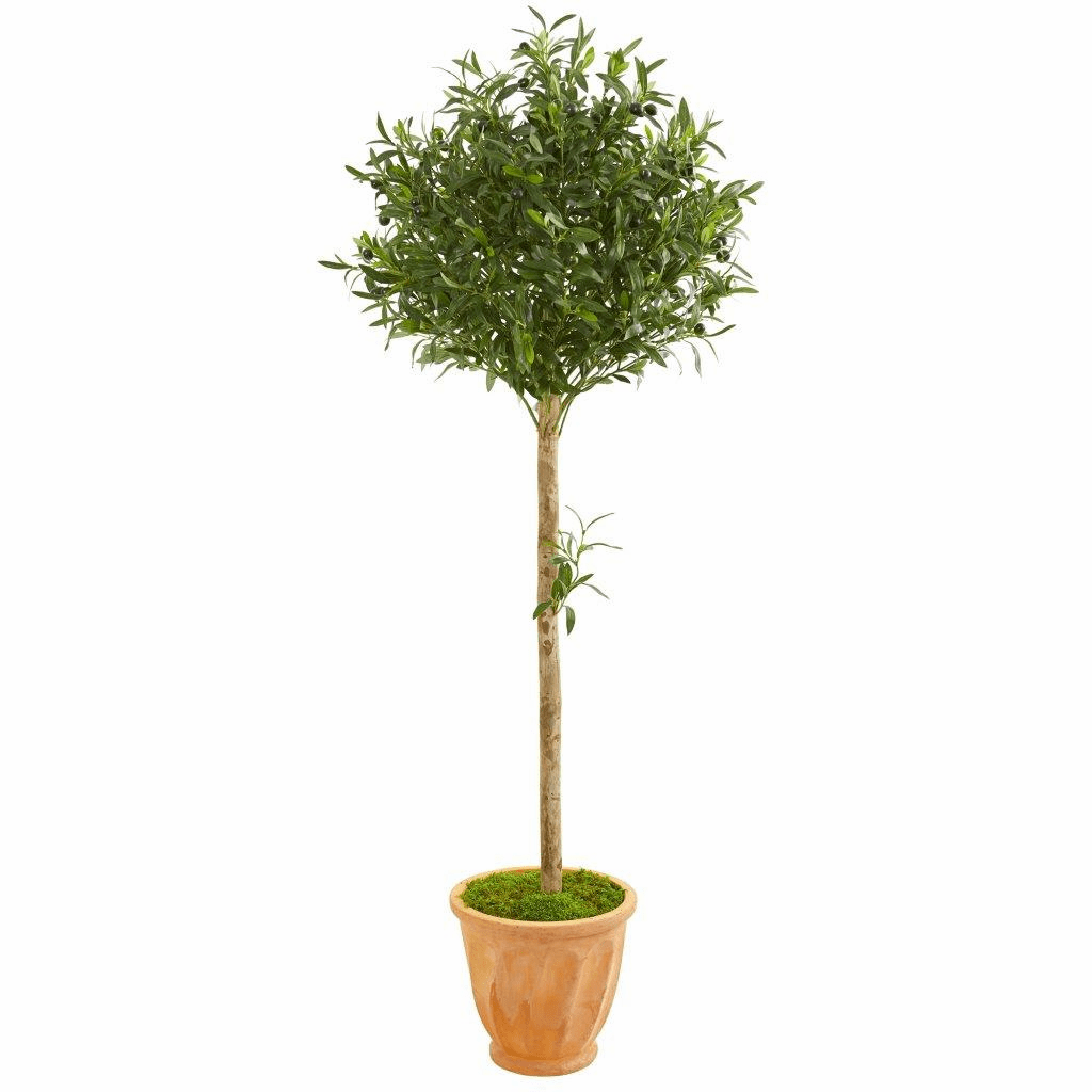 5� Olive Topiary Artificial Tree in Terra Cotta Planter