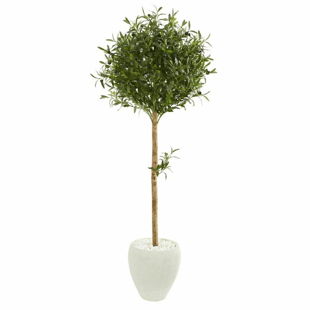 5� Olive Topiary Artificial Tree in White Planter