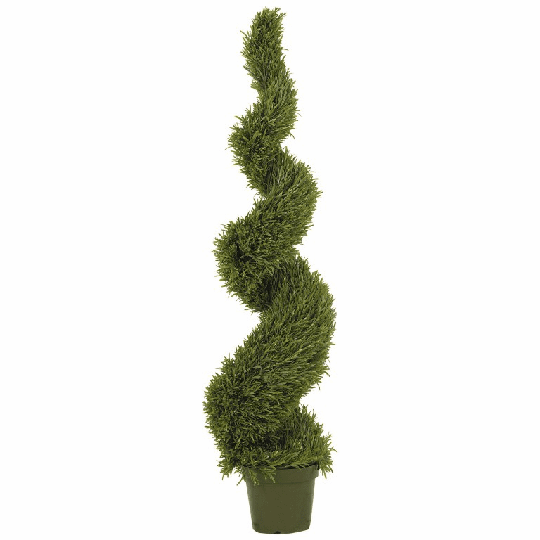 5' Rosemary Spiral Silk Tree (In-door/Out-door)