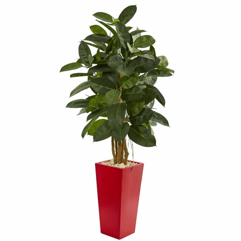 5' Rubber Leaf Artificial Tree in Red Tower Planter