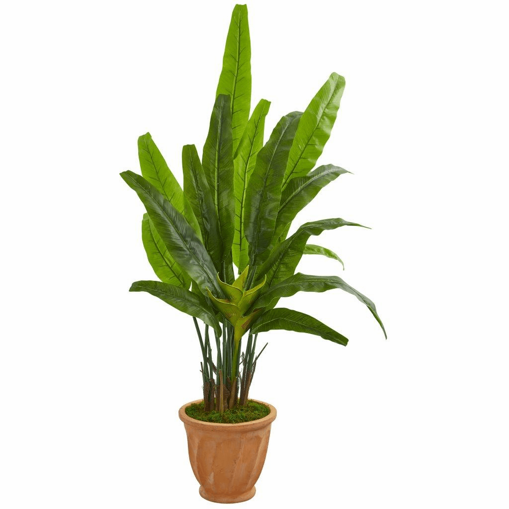 5� Travelers Palm Artificial Tree in Terra Cotta Planter