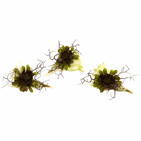 """5"""" Wispy Artificial Succulent Cactus with Seashell (Set of 3)"""