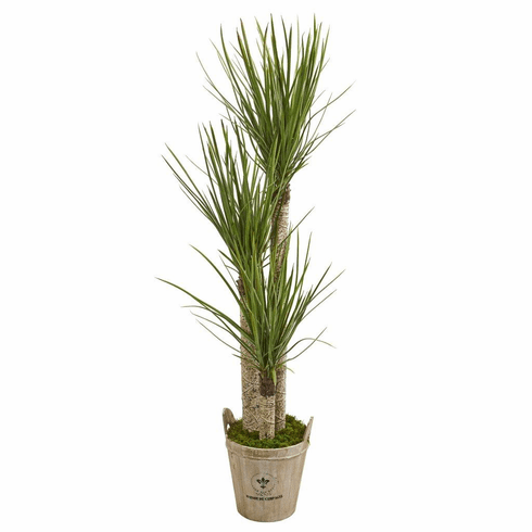 5' Yucca Artificial Tree in Farmhouse Planter