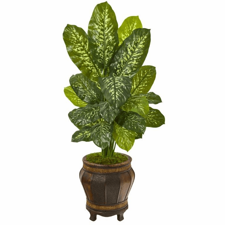 51� Dieffenbachia Artificial Plant in Planter (Real Touch)