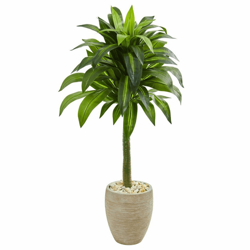"52"" Dracaena Artificial Plant in Sand Colored Planter"