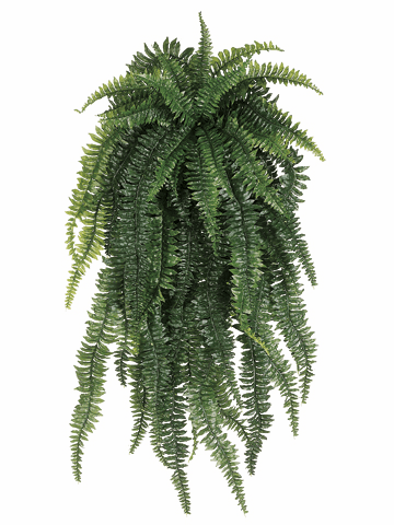 52 inch length Weeping Boston Silk Fern Bush with 55 Fronds - Set of 2 - non potted