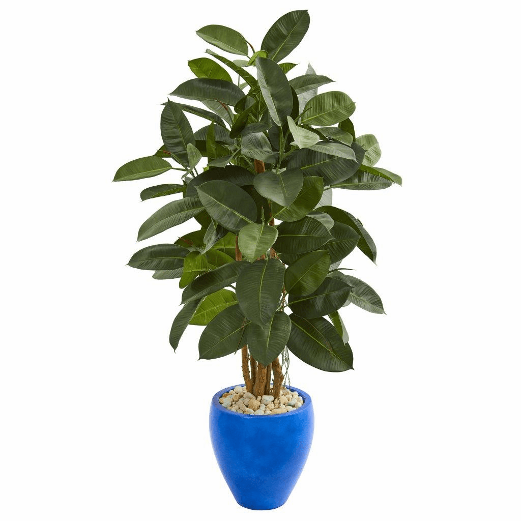 53� Artificial Rubber Tree in Blue Planter
