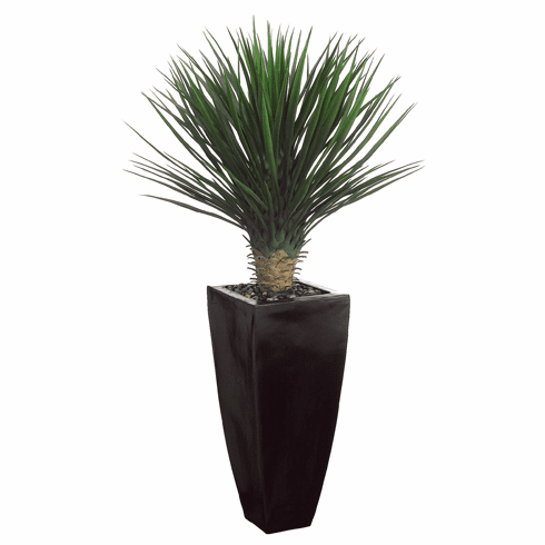 """53"""" Artificial Whipple Yucca Plant Arrangement in Black Decorative Container"""