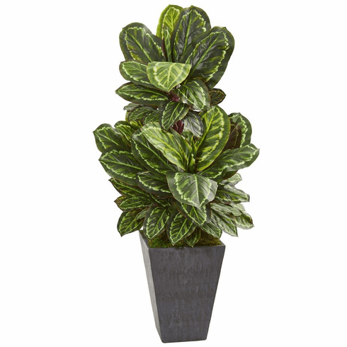"53"" Maranta Artificial Plant in Slate Finished Planter"