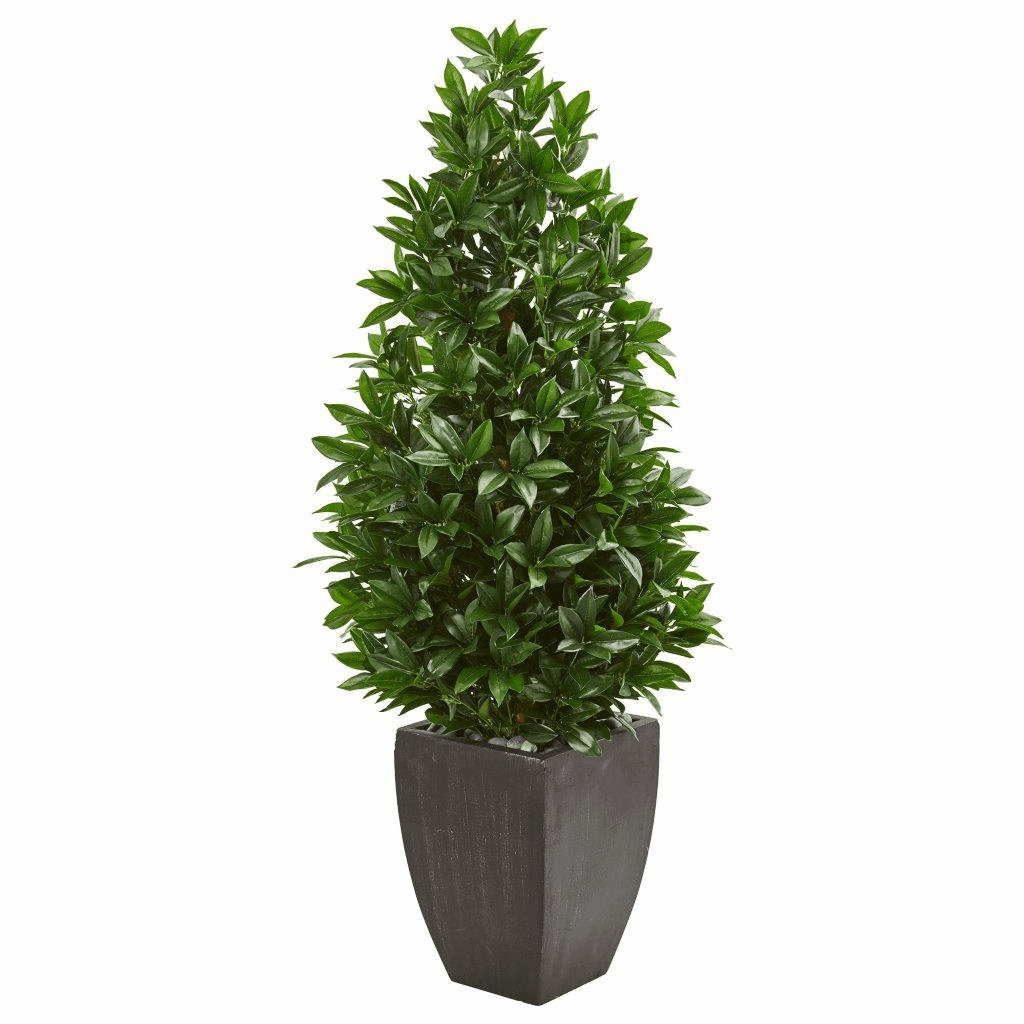 56� Bay Leaf Cone Topiary Artificial Tree UV Resistant in Black Planter (Indoor/Outdoor)