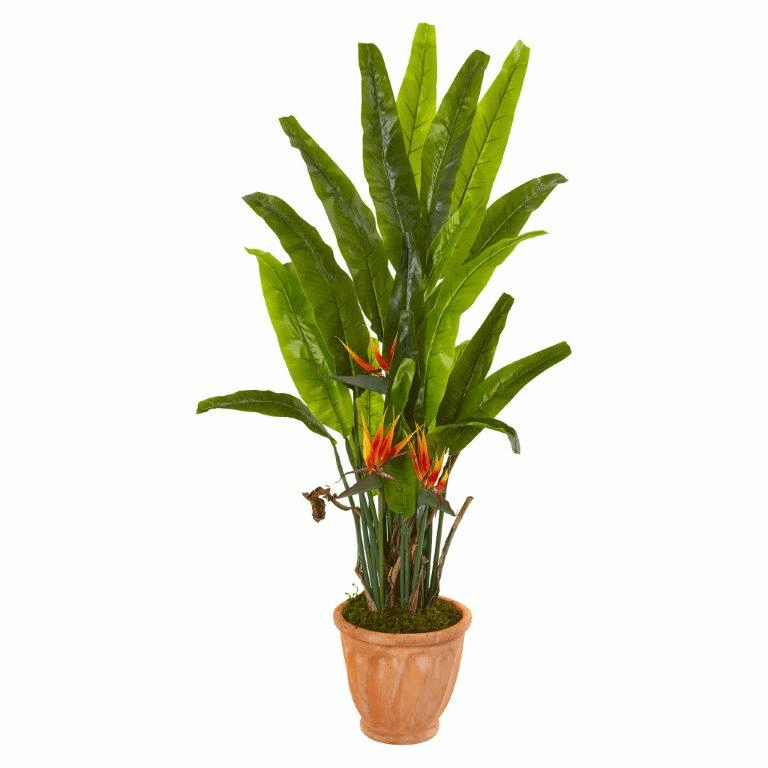 56� Bird of Paradise Artificial Plant in Terra-Cotta Planter