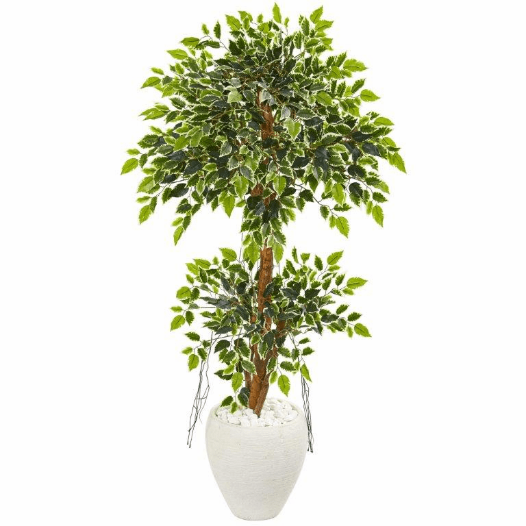 56� Variegated Ficus Artificial Tree in White Planter