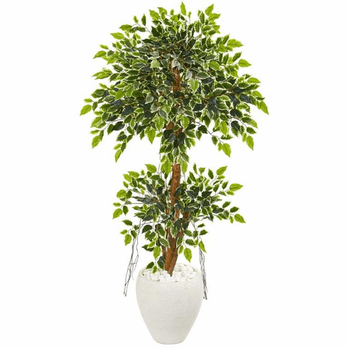 """56"""" Variegated Ficus Artificial Tree in White Planter"""
