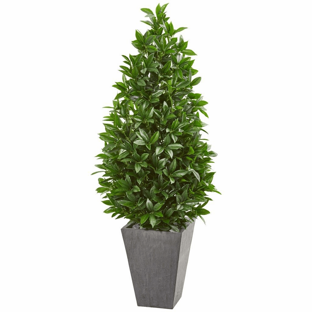 57� Bay Leaf Cone Topiary Tree in Slate Planter UV Resistant (Indoor/Outdoor)