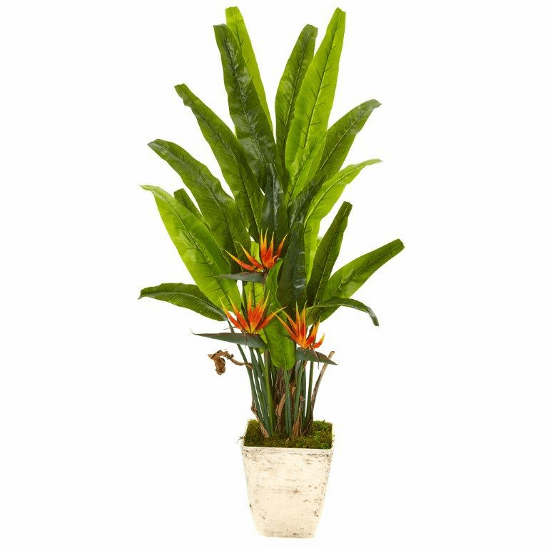 59� Bird of Paradise Artificial Plant in Country White Planter