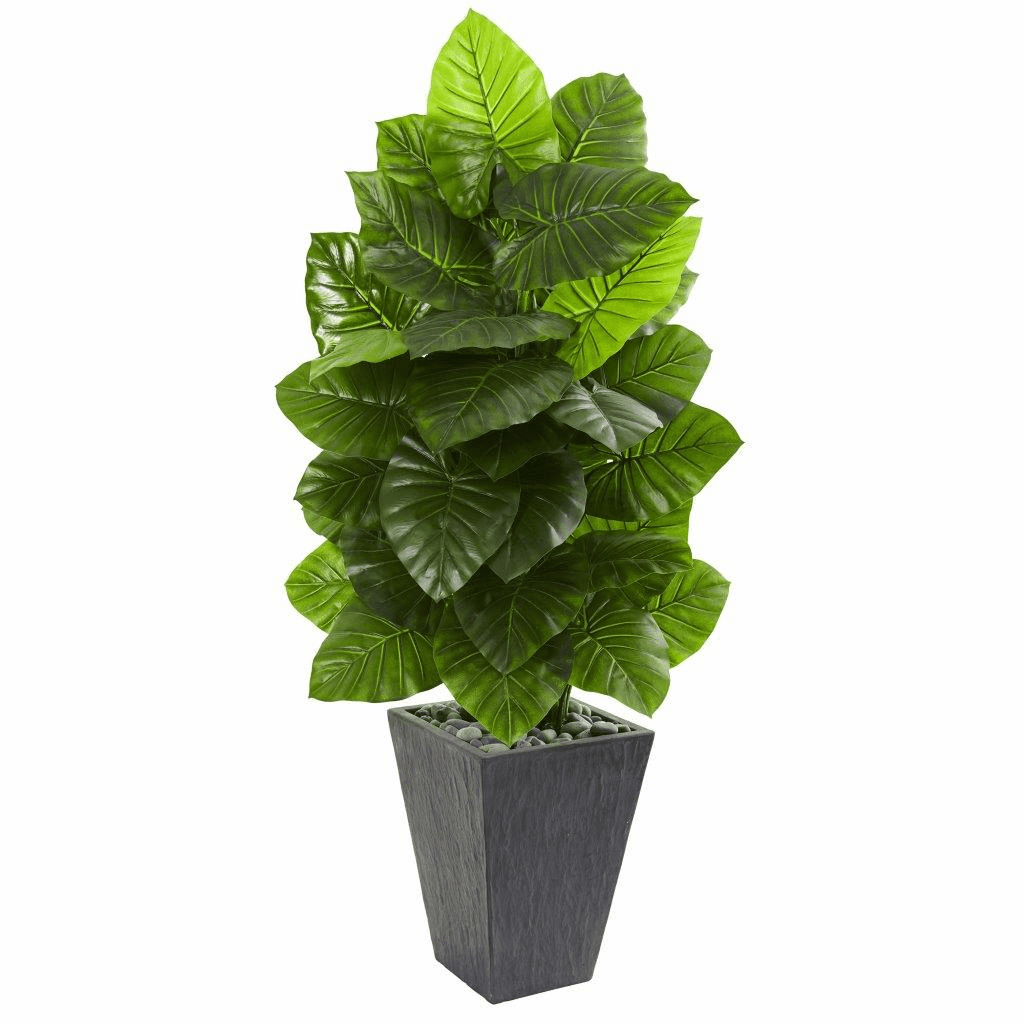 59� Taro Artificial Plant in Slate Finished Planter