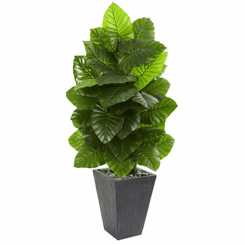 "59"" Taro Artificial Plant in Slate Finished Planter"