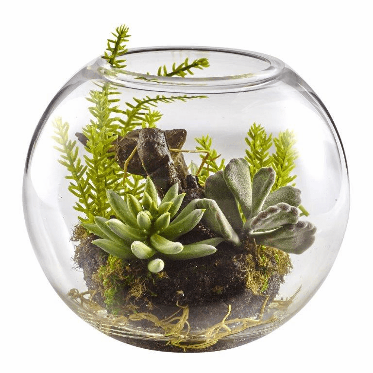 "6.5"" Artificial Succulent Garden with Mixed Cactus in Glass Vase"