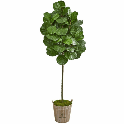 6.5' Fiddle Leaf Artificial Tree in Farmhouse Planter
