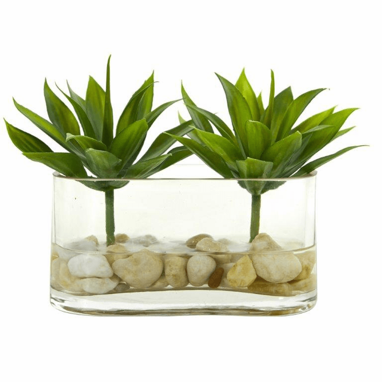 6.5� Mini Agave Succulent Artificial Arrangement in Glass Vase