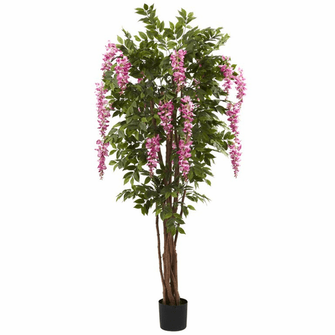 6.5' Wisteria Silk Tree