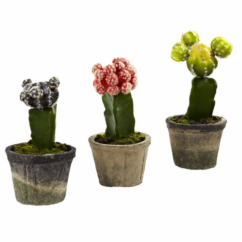 "6-7"" Artificial Colorful Cactus - Potted (Set of 3)"