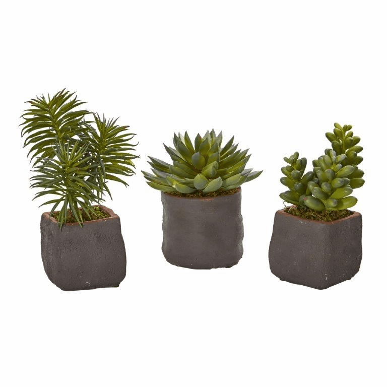 "6-8"" Mixed Succulent Trio Artificial Plant (Set of 3)"