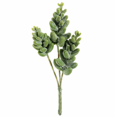 """6"""" Artificial Donkey Tail Succulent Pick - Set of 12"""