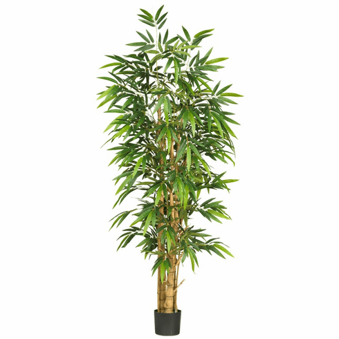 6' Belly Bamboo Silk Tree