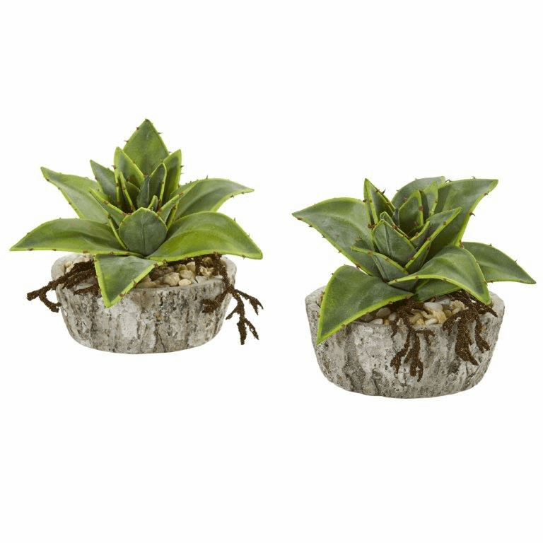 6� Dusty Succulent Artificial Plant in Weathered Vase (Set of 2)
