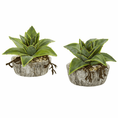 "6"" Dusty Succulent Artificial Plant in Weathered Vase (Set of 2)"