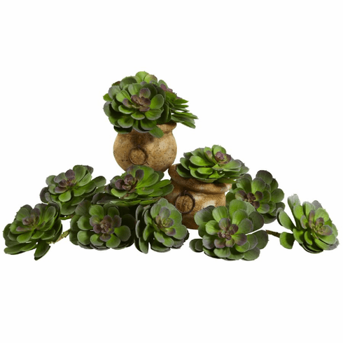 "6"" Echeveria Succulent Artificial Cactus (Set of 12) in Green"