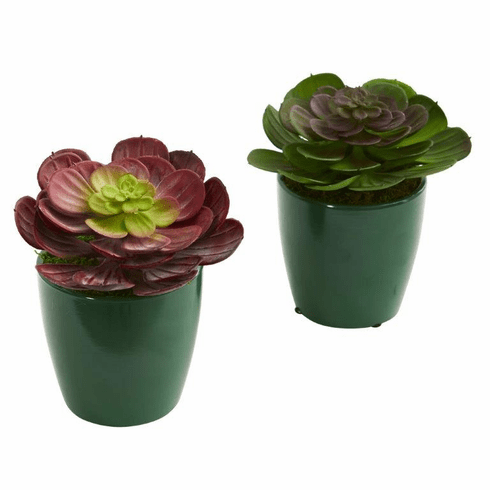 "6"" Echeveria Succulent Artificial Plant in Green Planter (Set of 2)"