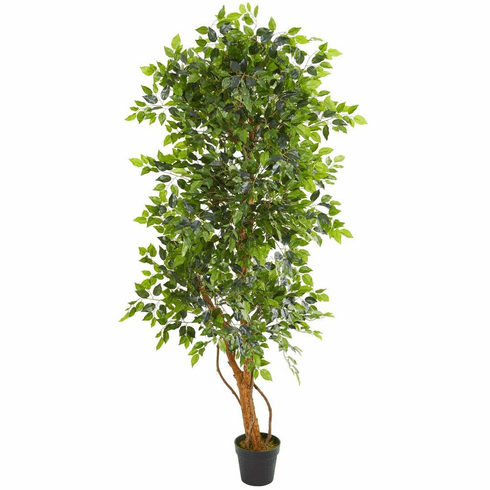 6' Elegant Ficus Artificial Tree