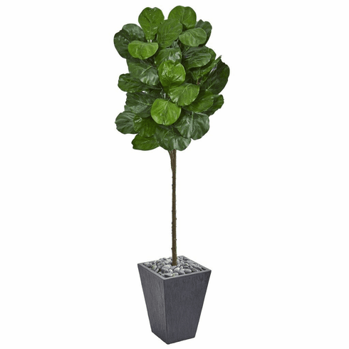 6' Fiddle Leaf Artificial Tree in Slate Finished Planter