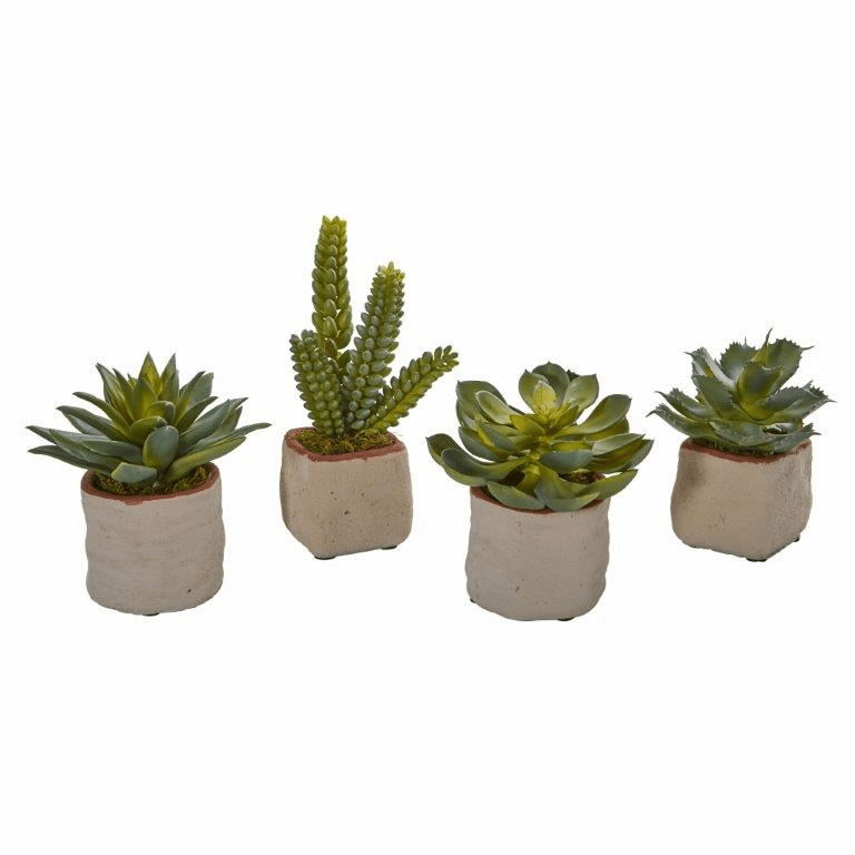 "6"" Mixed Succulent Artificial Plant (Set of 4)"