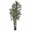 6' Robellini Palm Silk Tree
