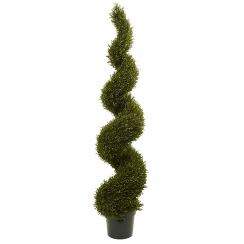 6' Rosemary Spiral Tree (Indoor/Outdoor)