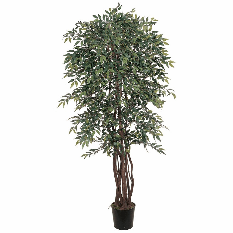 6' Smilax Silk Tree