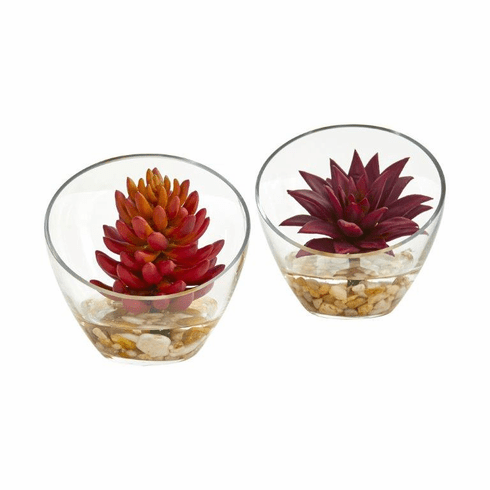 """6"""" Succulent Artificial Plant in Glass Vase (Set of 2)"""