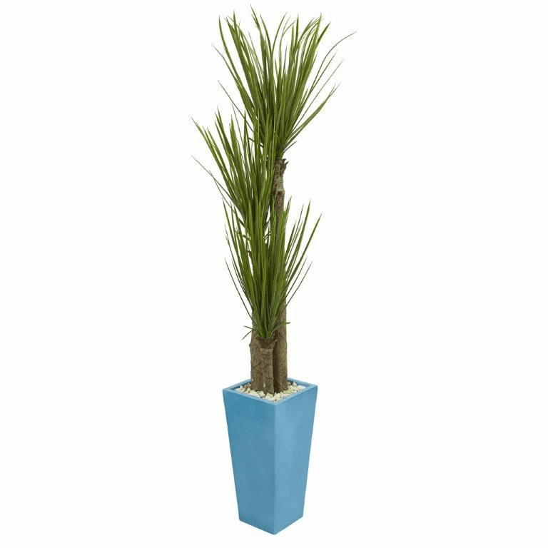 6� Triple Stalk Yucca Artificial Plant in Turquoise Planter