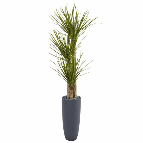 6' Yucca Artificial Tree in Bullet Planter